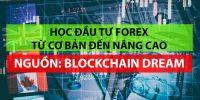 Học Forex từ căn bản đến nâng cao trên Blockchain Dream – Cẩm nang gối đầu giường cho người mới