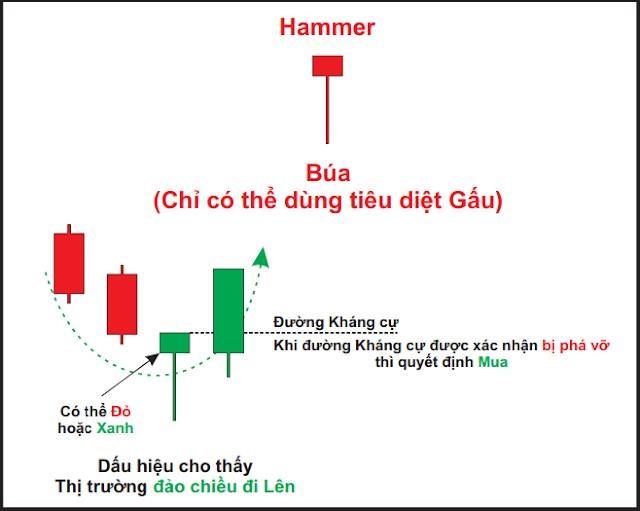 Nến búa (Hammer)
