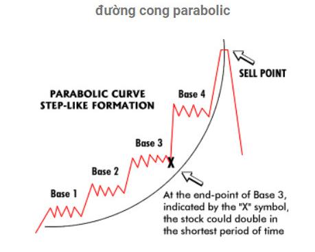 Mô hình Đường cong Parabolic
