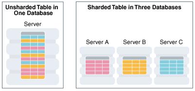 Phân chia dữ liệu — Sharding/Data Partitioning