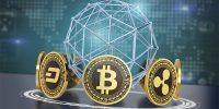 Các quỹ đầu tư lớn trong Crypto và danh mục đầu tư của họ