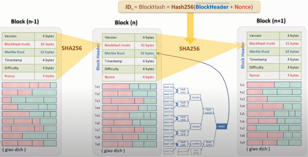 Cấu trúc móc xích các block